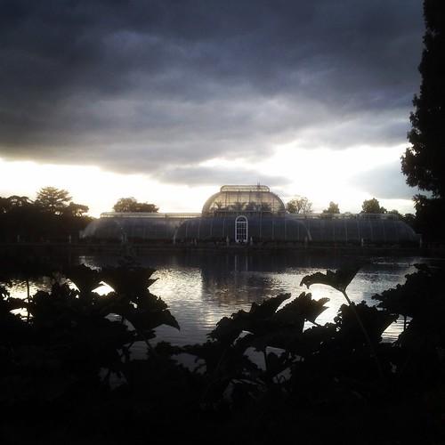 Kew Gardens Palm House