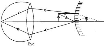 NCERT Solutions for Class 12 Physics Chapter 9 Ray Optics and Optical Instruments 44