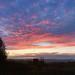 Sunset 289:365 JF (2)