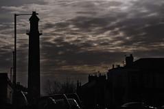 Town Sky -Fleetwood
