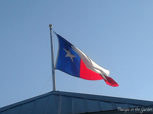 Texas Flag 3