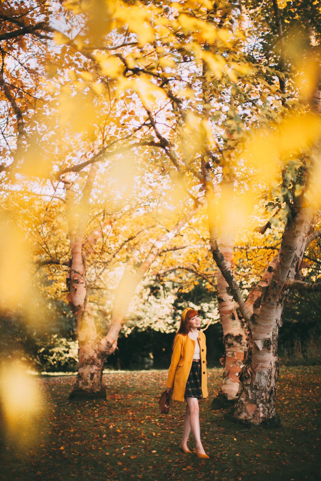 birch trees-16