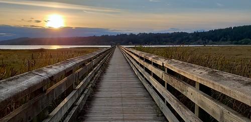 wetland thelerwetlands hoodcanal tide saltwater saltwatermarsh galaxys9 sunset pier grass cloudsstormssunrisessunsets