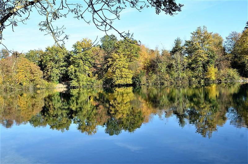 River Aare 25.10 (3)