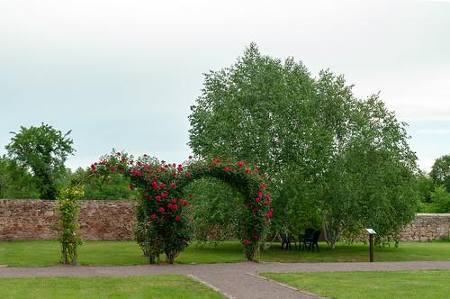 Jardin Abbatial (Altorf, France)-005