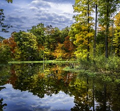 Concord Woods_20181030_13