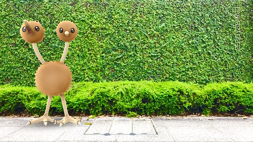 084 Doduo (position=left)
