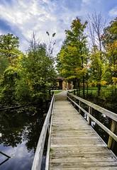 Concord Woods_20181030_18