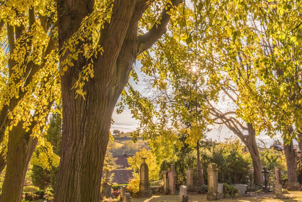 Herbst_Alter_Friedhof_018a