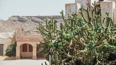 En algún lugar del desierto