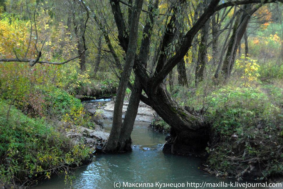 Изгибы реки Городня