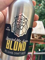 Blond lion