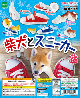EPOCH 「柴犬與運動鞋」頑皮登場!柴犬とスニーカー