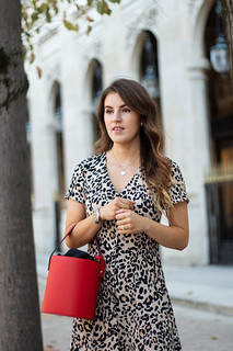 leopard print dress-10 | by robyncaitlin
