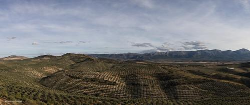 Panorama desde castillo de Piñar