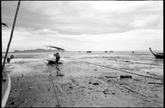 bw low tide
