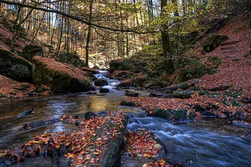 Karlstahl Autumn 2018