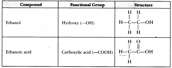 CBSE Sample Papers for Class 10 Science Paper 5 15