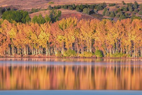 landscape lake water reflections fall autumn trees color longexposure chatfieldstatepark lakechatfield colorado