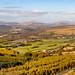 Panorama from Craig y Llyn