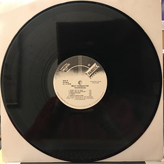 BEAT DOMINATOR:TECHNO-BASS(RECORD SIDE-B)