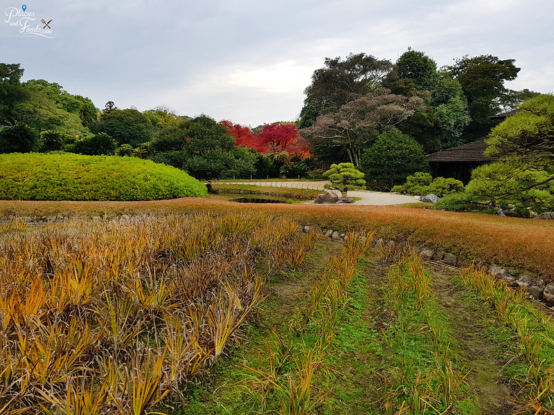 okayama garden autumn