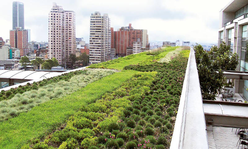 Desain Atap Hijau Untuk Rumah Anda