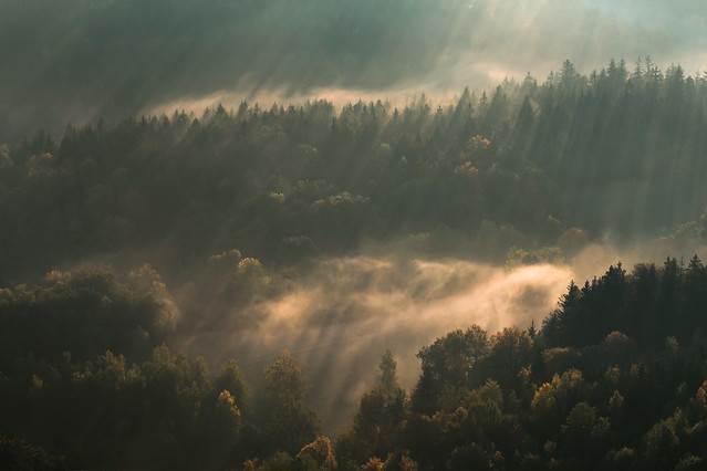 First Sunlight, Canon EOS 70D, Canon EF 70-200mm f/4L IS
