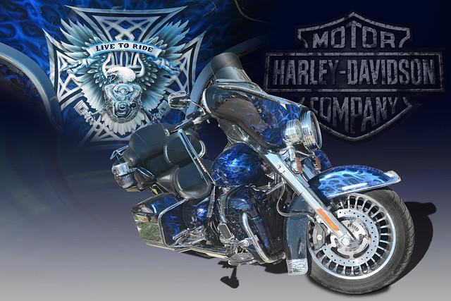 Live To Ride - Custom Harley Davidson - (In Explore)