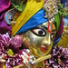 Darshan from IMG_0016