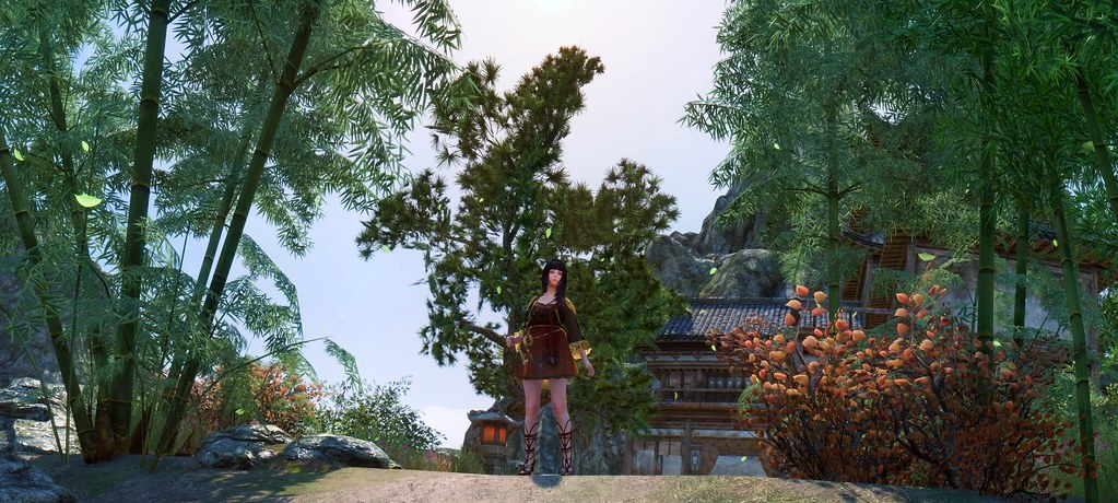 Wanna outgoing | Clothes : Red moon Mod clothes from BDO arm