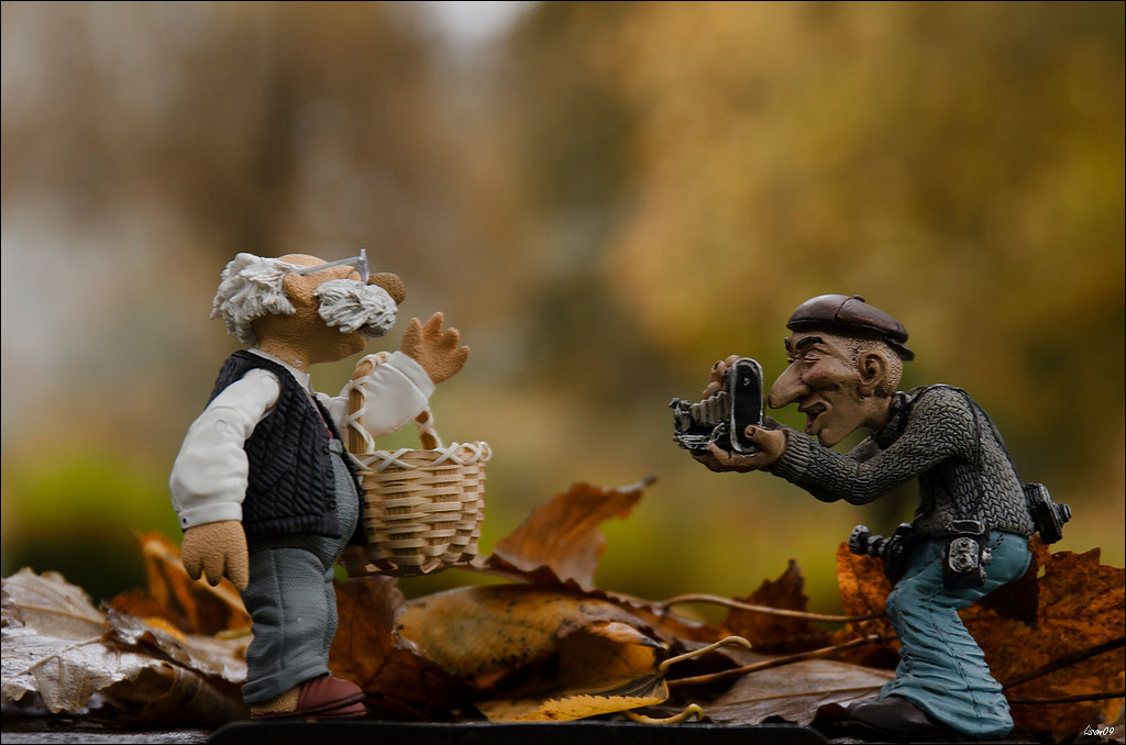 Shooting d'automne 45594809781_a346277842_b