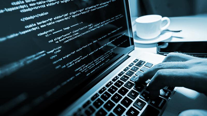 Di awal karier seorang software developer perlu mengembangkan beragam bahasa pemrograman.