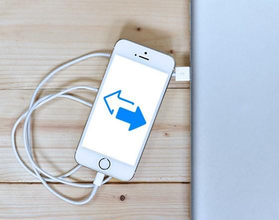 Công cụ này sẽ giúp bạn dễ dàng sao lưu dữ liệu iPhone/iPad lên máy tính