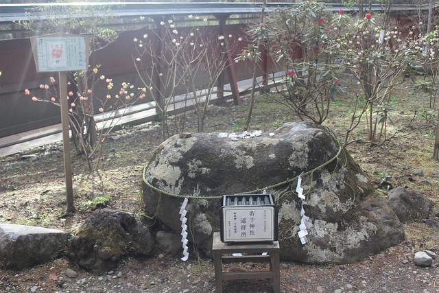 futarasan-gosyuin022