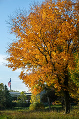 Sheboygan Fall Colors-8