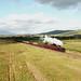 The Cumbrian Coast Express