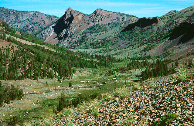 Looking down the Left Fork of Fall Creek. Pioneer Mountains