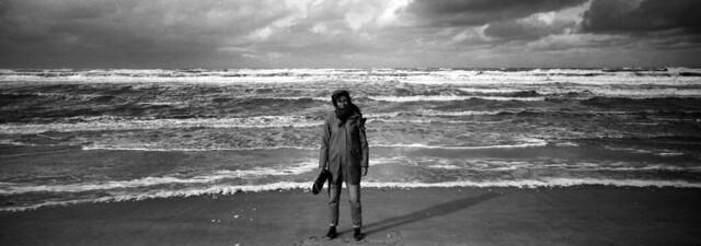 Wild North Sea