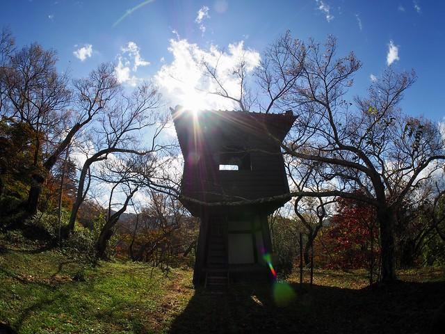 2018.10.27 高遠城址公園