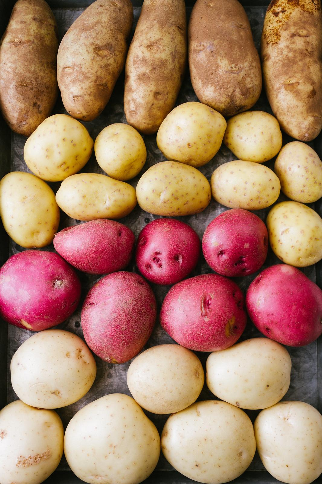Vegan Mashed Potatoes: Russet, Yukon Gold, Red & White