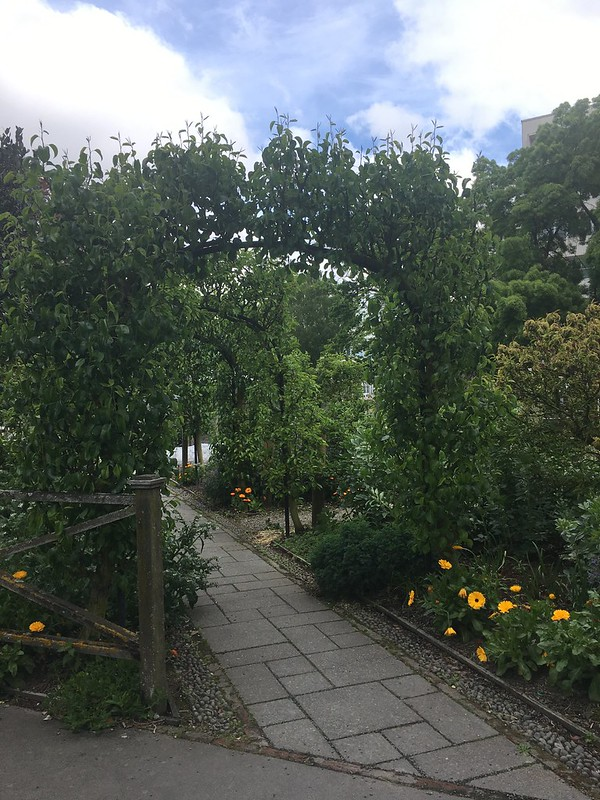 Christchurch Botanical Gardens