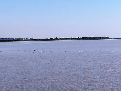 RIVE COTE LAMARQUE