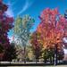Hampton Park, Ottawa