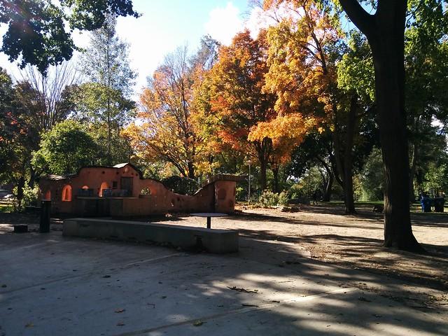 In Dufferin Grove Park (5) #toronto #dufferingrove #dufferingrovepark #parks #fall #autumn #latergram