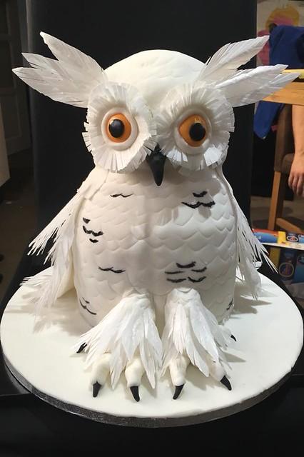 Owl Cake by Alchemy Cakes UK
