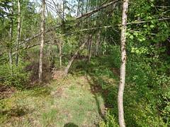 Abandoned trail - near Guderudløkka - Askim - Østfold - Norway