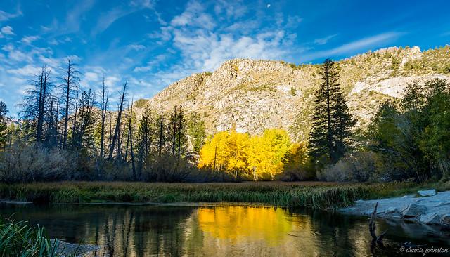 Bishop Creek Aspens 1, Nikon D610, AF-S Nikkor 16-35mm f/4G ED VR