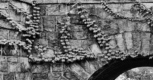 stone blackwhite bridge riverway walk