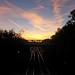 Melton sunrise